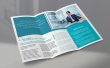"Brochure 8.5"" x 11"" plus any fold"